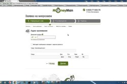 Образец онлайн заявки в MoneyMan